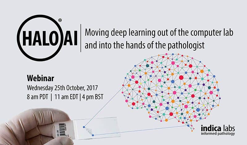 Upcoming Webinar – Introducing HALO-AI: Moving deep learning out of the computer lab and into the hands of the pathologist