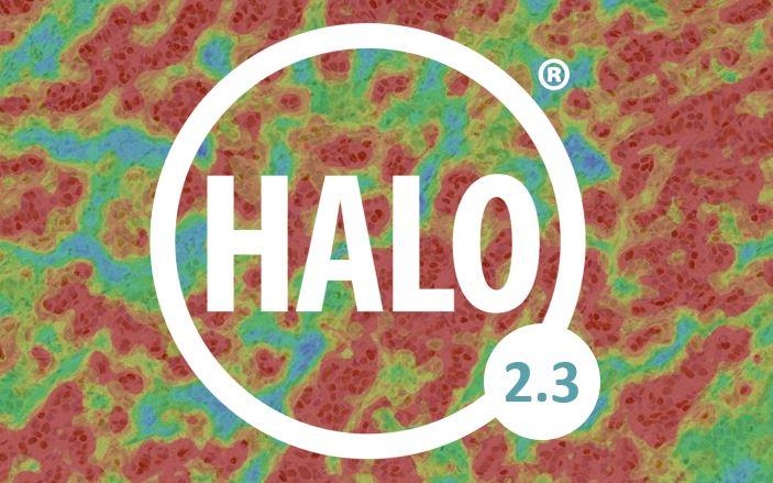 Come & See HALO 2.3