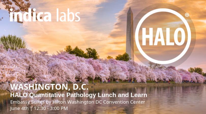 Indica Labs' Washington, D.C. HALO Quantitative Pathology Lunch & Learn